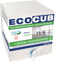 Acheter Glass and Surface Cleaner Ecocub Ecolabel 10 L