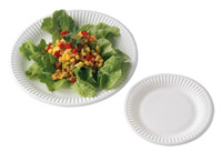Acheter Disposable plate white cardboard 23 cm by 500