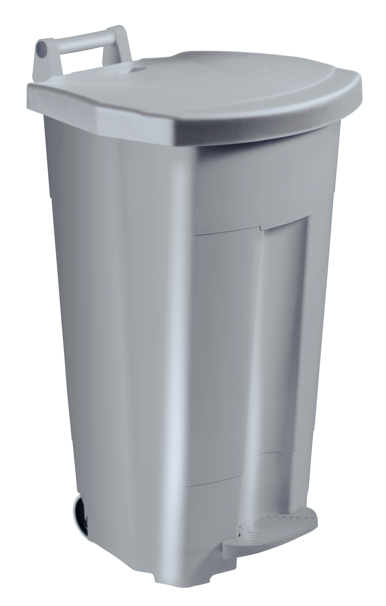 Kitchen Bin Rossignol 90 L Gray Cover