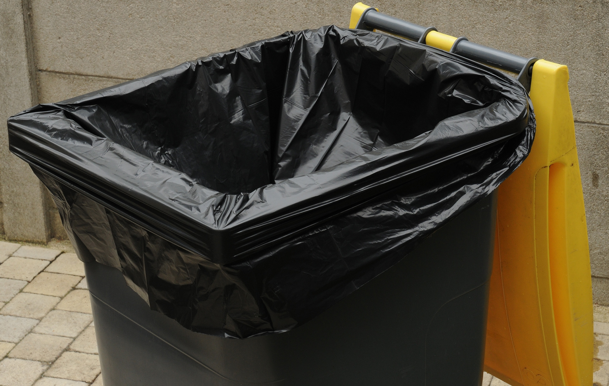Container Trash Bag 240 L